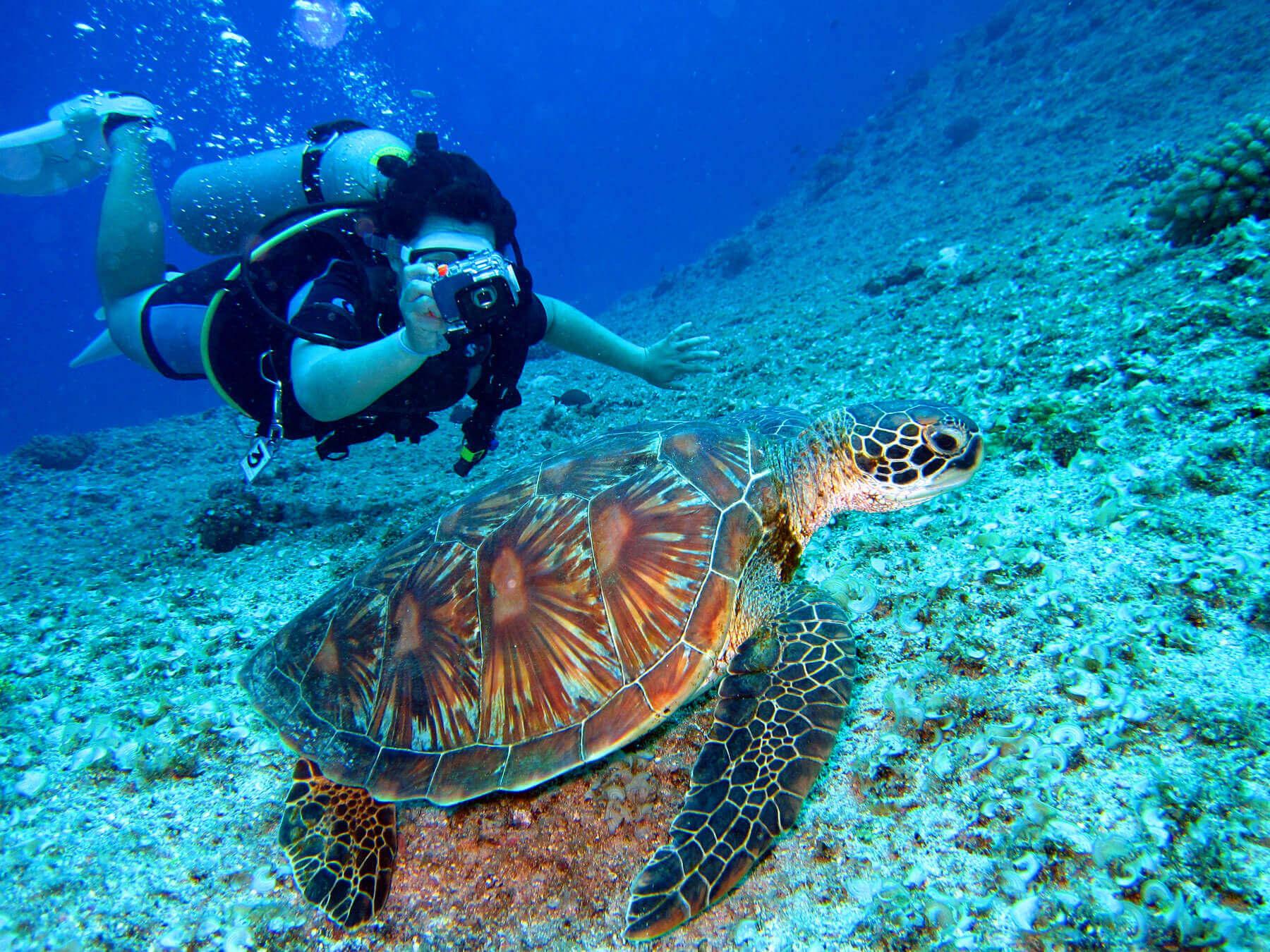 Blue Lagoon Scuba Diving Fiji