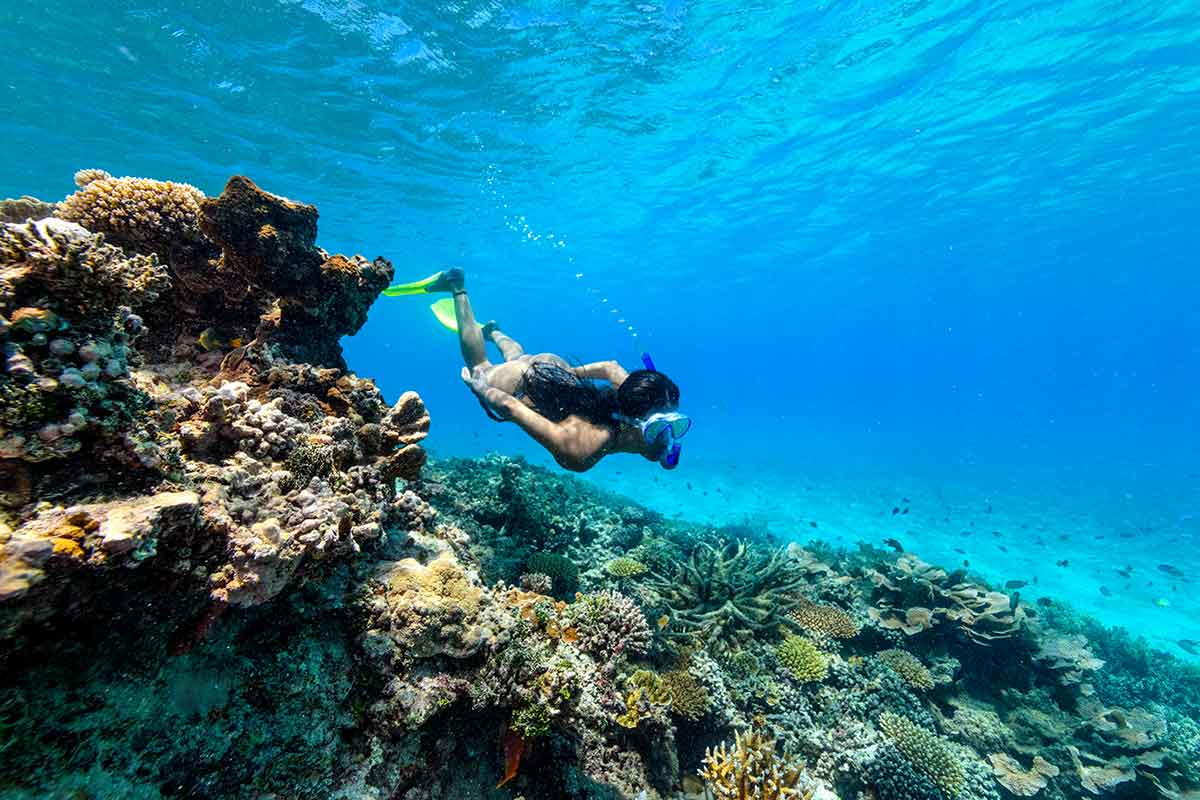 reef hopping in Fiji